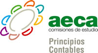 Comisión Principios Contables