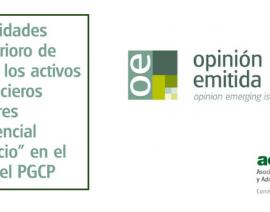 Opinión Emitida 2 de  la Comisión AECA de Sector Público